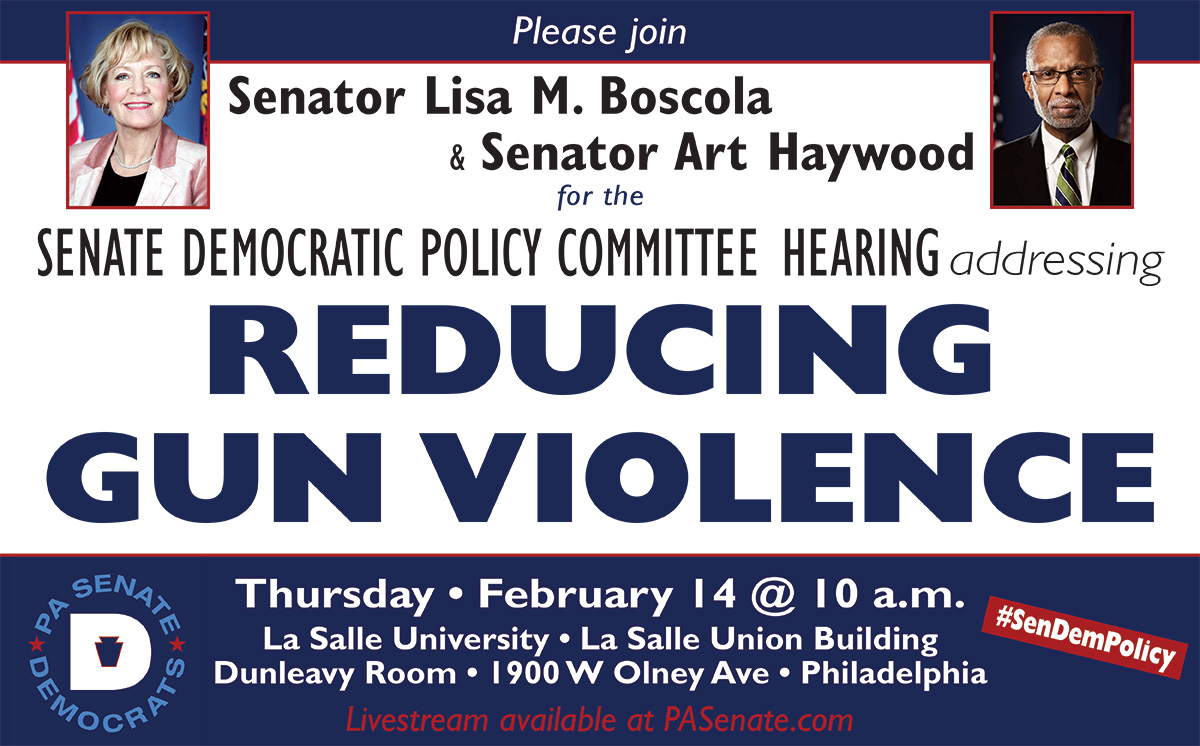 Policy Hearing Addressing Reducing Gun Violence